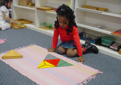 The Montessori School Day